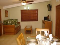 Living and dining area (1 bedroom unit)